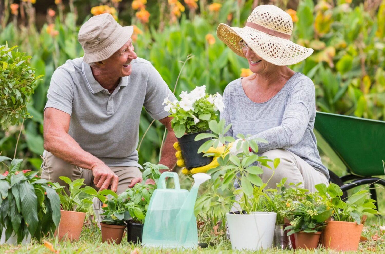 Польза садоводства для пожилых людей